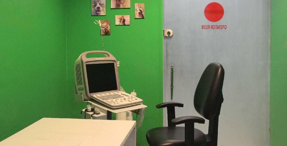تصویر-برداری-سونوگرافی-تشخیصی-پت