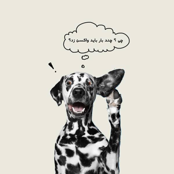 هزینه واکسن هفت گانه سگ