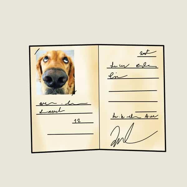 شناسنامه سگ