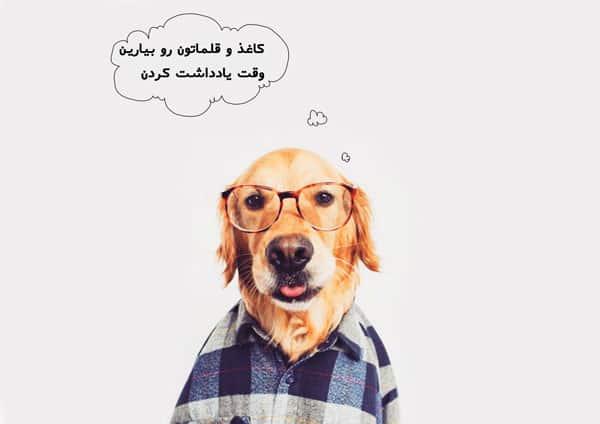 نشانی و شماره مراکز درمانی حیوانات خانگی