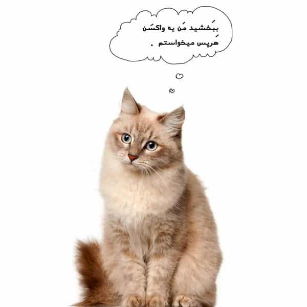 واکسن گربه-واکسن لوسمی گربه