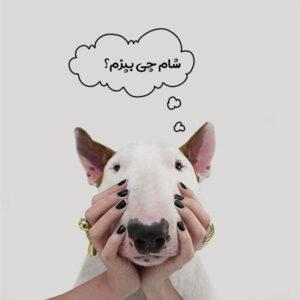 لیست غذاهای مفید برای سگ